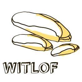 Witlof-BIO