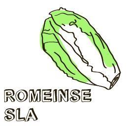 Rosbief met Romeinse sla