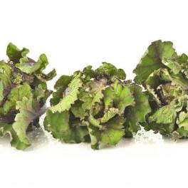 Flower sprouts op oosterse wijze